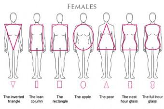 Somatype Females