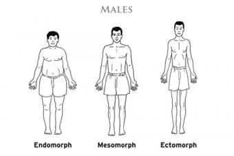 Somatype Males