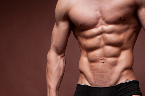 Anatomy Of Abs « Personal Training and Fitness Articles from The MPH ...